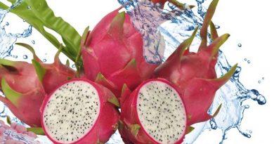 Ejder Meyvesi Mineral ve Vitaminler 1