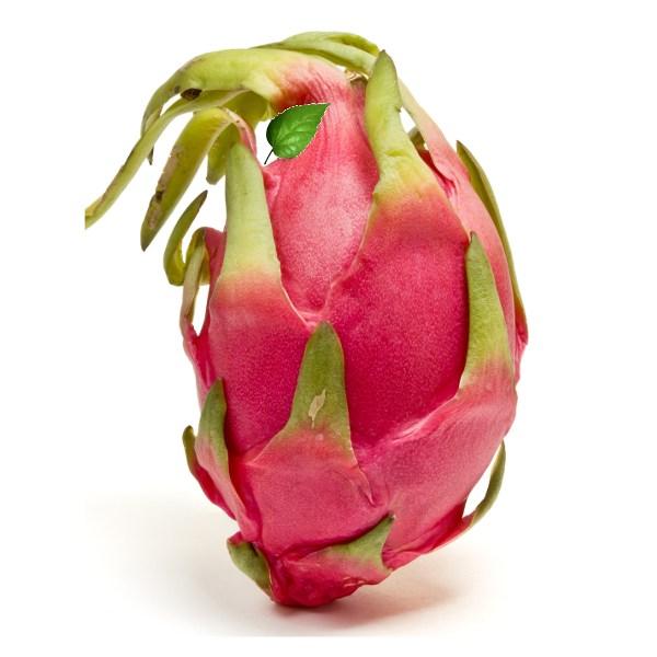 Ejder Meyvesi Pitaya Girişimi