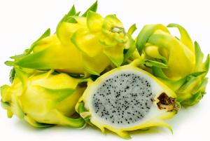 Pitaya Golden Yellow